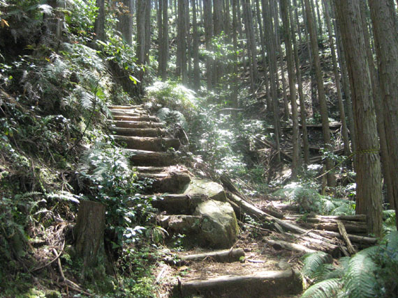 熊野古道・ツヅラト峠3-12