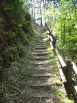 熊野古道・ツヅラト峠4-02