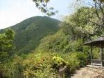 熊野古道・ツヅラト峠4-14