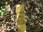 熊野古道・ツヅラト峠5-13