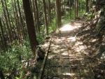 熊野古道・ツヅラト峠6-10