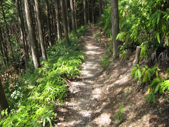 熊野古道・ツヅラト峠6-06