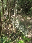 熊野古道・ツヅラト峠6-08