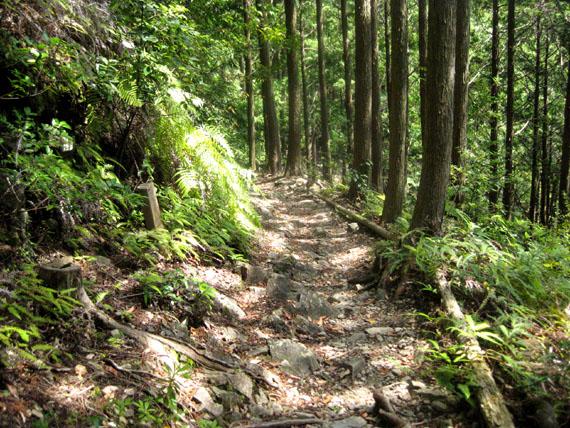 熊野古道・ツヅラト峠6-23