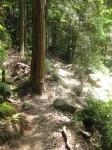 熊野古道・ツヅラト峠6-21