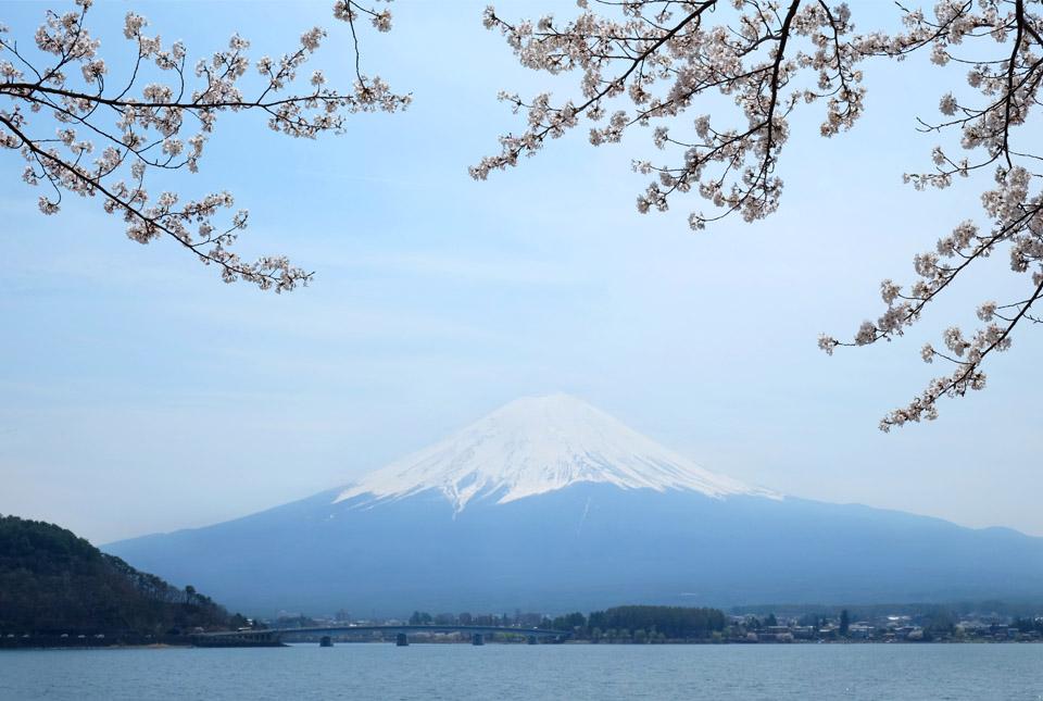 5956 河口湖と富士 960×645