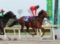 レース 3_1