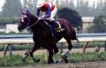 2004年 百万石賞_1