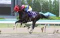 2012 百万石賞