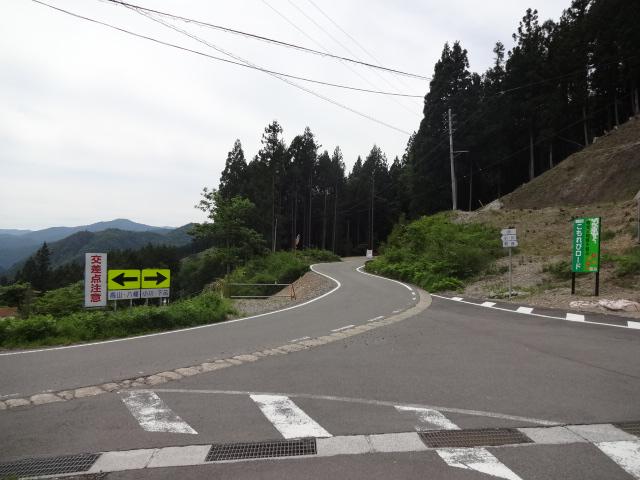 小川峠への分岐