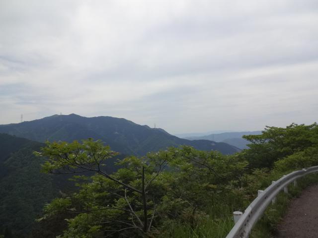 遠くの山々