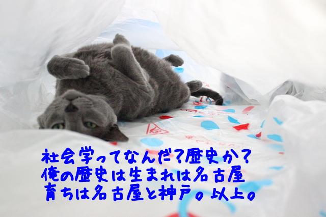 OQnif37vSPFOTQi1433837266_1433837372.jpg