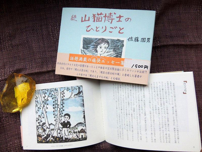 山猫博士のひとりごとDSCN5969