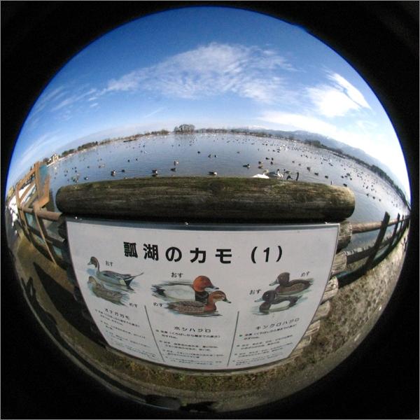 20150121★02-IMG_2466