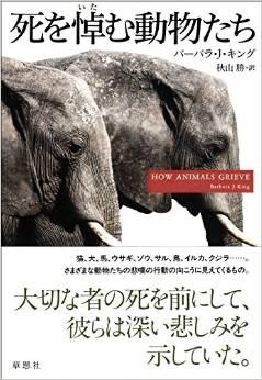 死を悼む動物たち