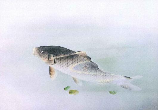 瓢池園 釉下彩鯉図陶額 530