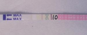 排卵検査薬 高温期10日目