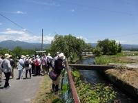 徳島堰を越える水路