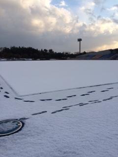 雪の人工芝