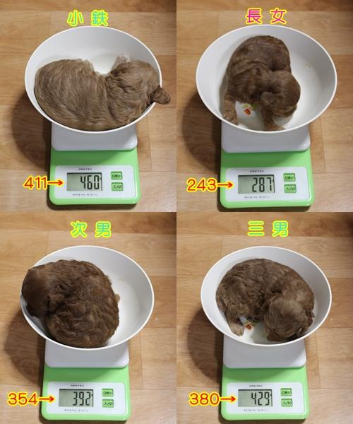2-24 体重
