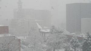 イブの雪景色