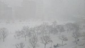 大寒の札幌