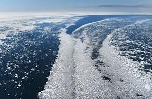 過去最小の流氷