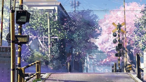 桜散る踏切