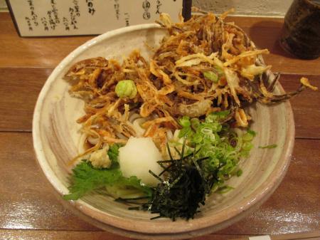 桜海老と空豆のかき揚げおうどん(ぶっかけ)
