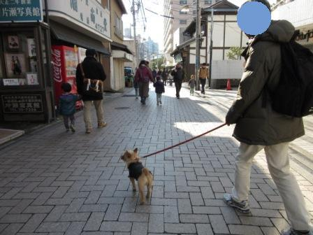 IMG_0656 14・12・30湘南