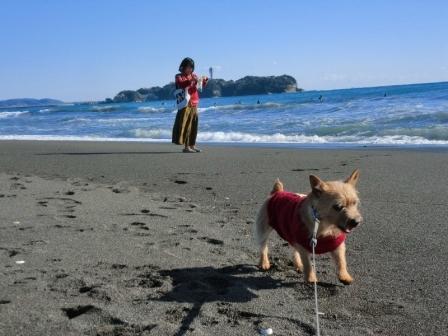 2013-01-27_019チョコ江の島