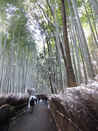 IMG_0761 15・1・2雪嵐山