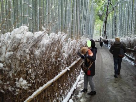 DSC_9442 15・1・2雪嵐山