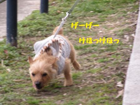 IMG_081215・1・17久方川辺