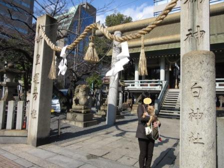 IMG_0874  15・1・31白神社