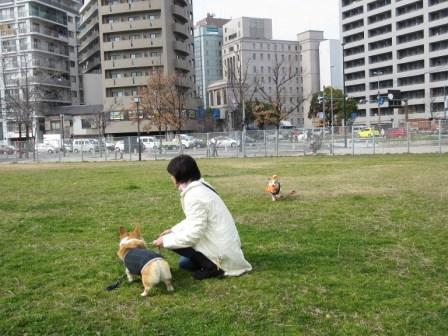 IMG_097815・2・7ぴのまりちゃんと広場