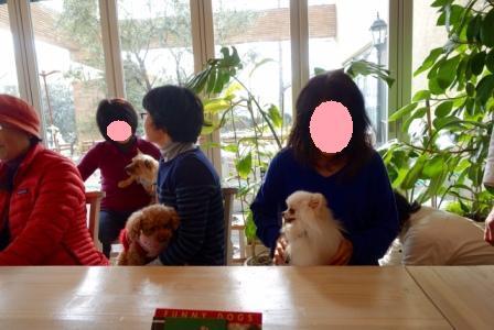 FullSizeRender (1) 15・2・11カフェ取材