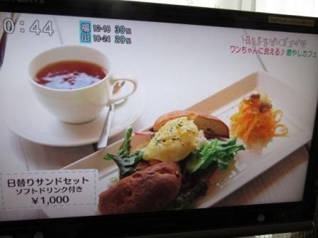 IMG_1094 15・2・11カフェ取材