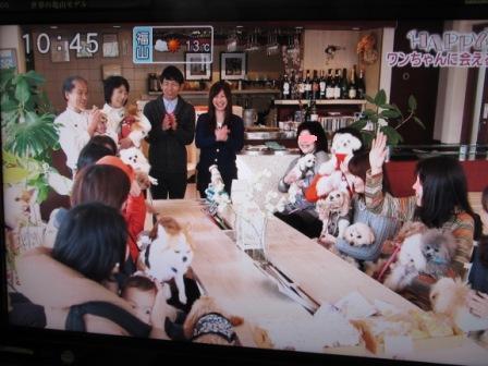 IMG_1109 15・2・11カフェ取材