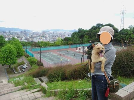 DSC_0002a15・6竜王公園