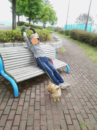 DSC_9995 15・5竜王公園