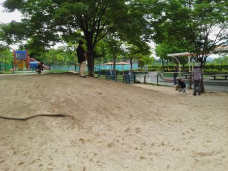 DSC_998615・5竜王公園