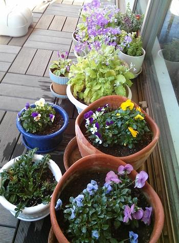 gardening285.jpg