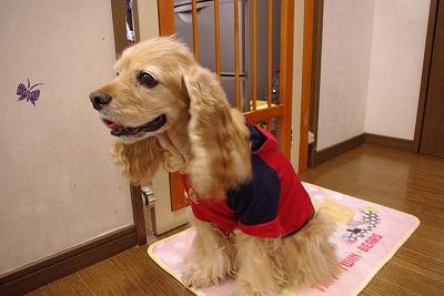 s-洋服2