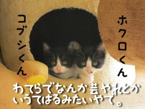 IMG_3144.jpg