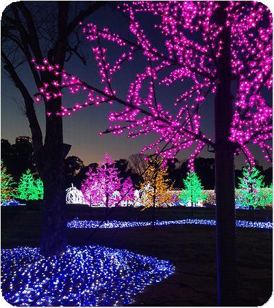 大阪城3Dマッピングイルミ木