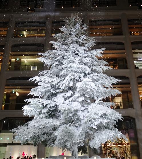 Tree_20150531030649a68.jpg