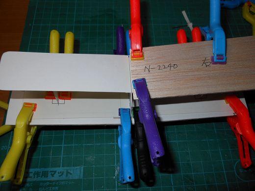DSCN8931.jpg