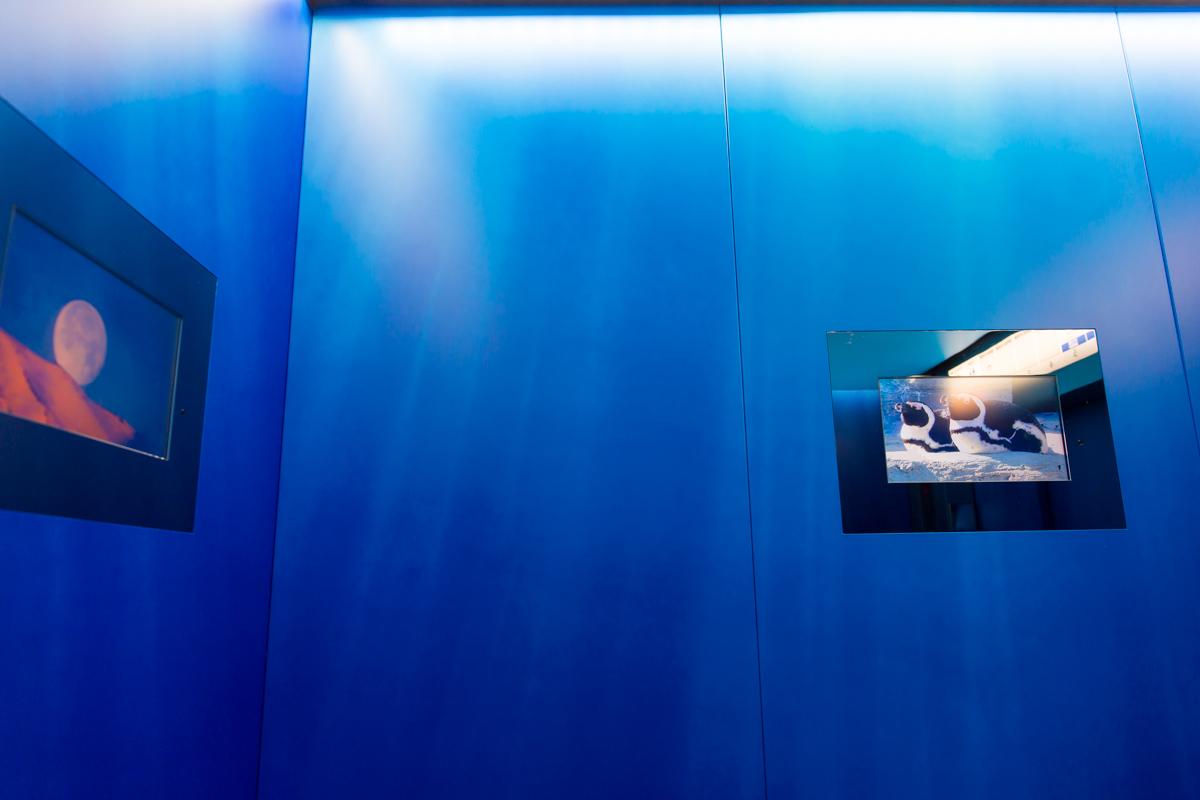 池袋水族館貸切1(4)