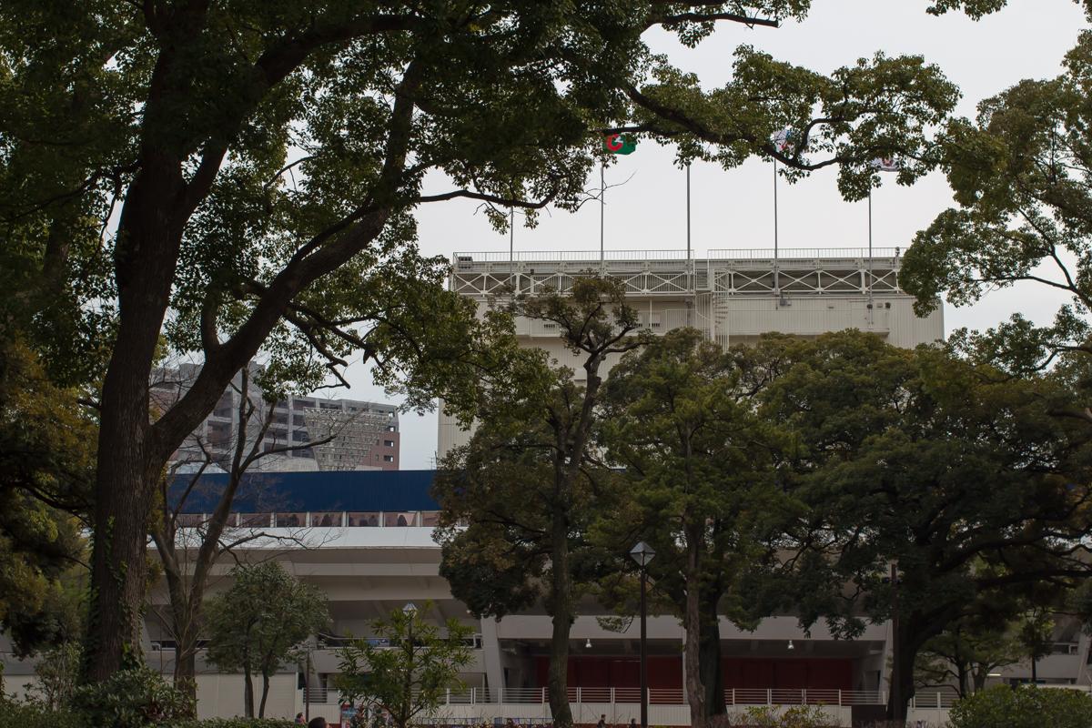横浜マラソン(13)